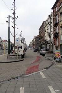 Brusselfietsen