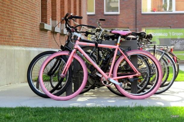 Roze fiets (3)